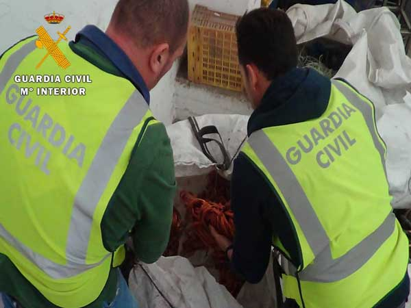 guardia-civil-zaragoza-robo-cable-25-11-15 4