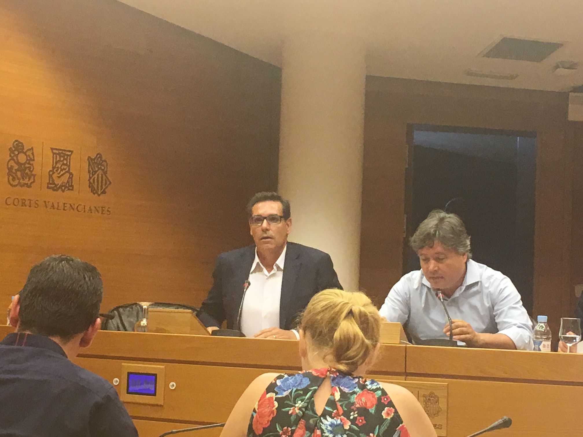 Fco Martin Ucles Presidente Siprojefes en Cortes Vlc