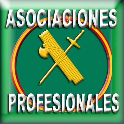 Asociaciones Profesionales